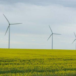 Saint-Léon-éoliennes-St-Léon-